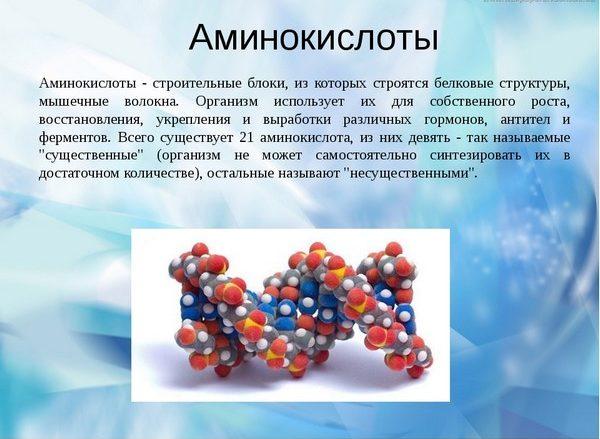 Аминокислоты тоже включают в состав липолитиков