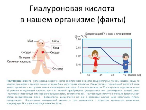 С годами в организме становится меньше гиалуроновой кислоты
