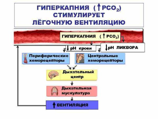 В области введения средства возникает состояние гиперкапнии