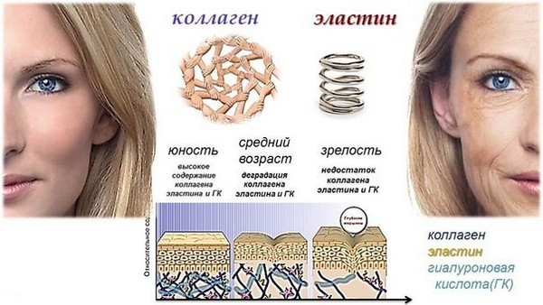 С возрастом уменьшается количество коллагена, а значит, ухудшается состояние кожи