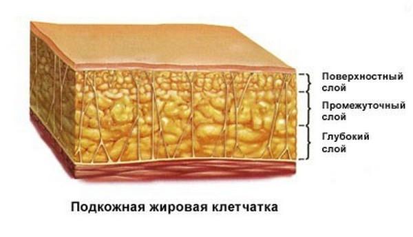 Пластырь борется только с поверхностными слоями жира