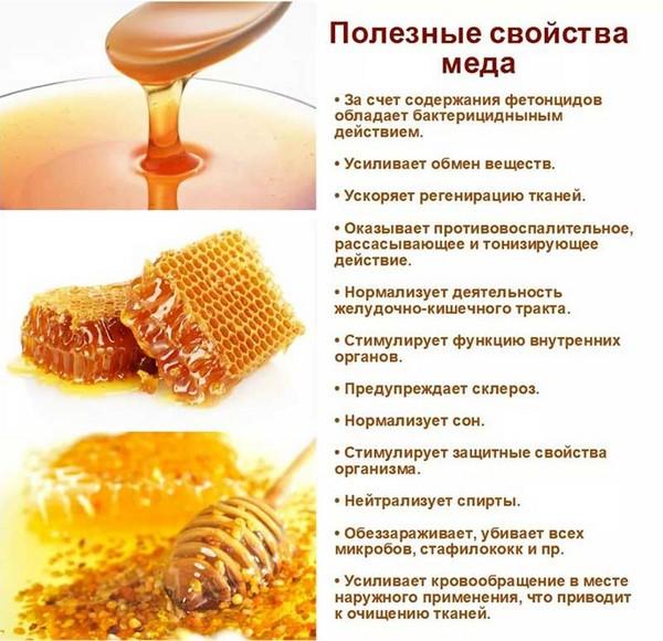 Пчелиный мед крайне полезен