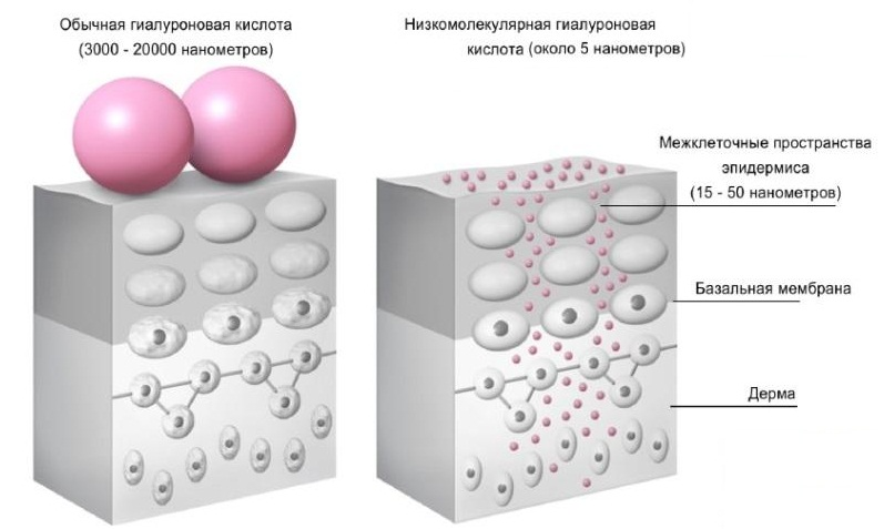 Эффективность действия гиалуроновой кислоты прямо зависит от глубины ее проникновения в кожу